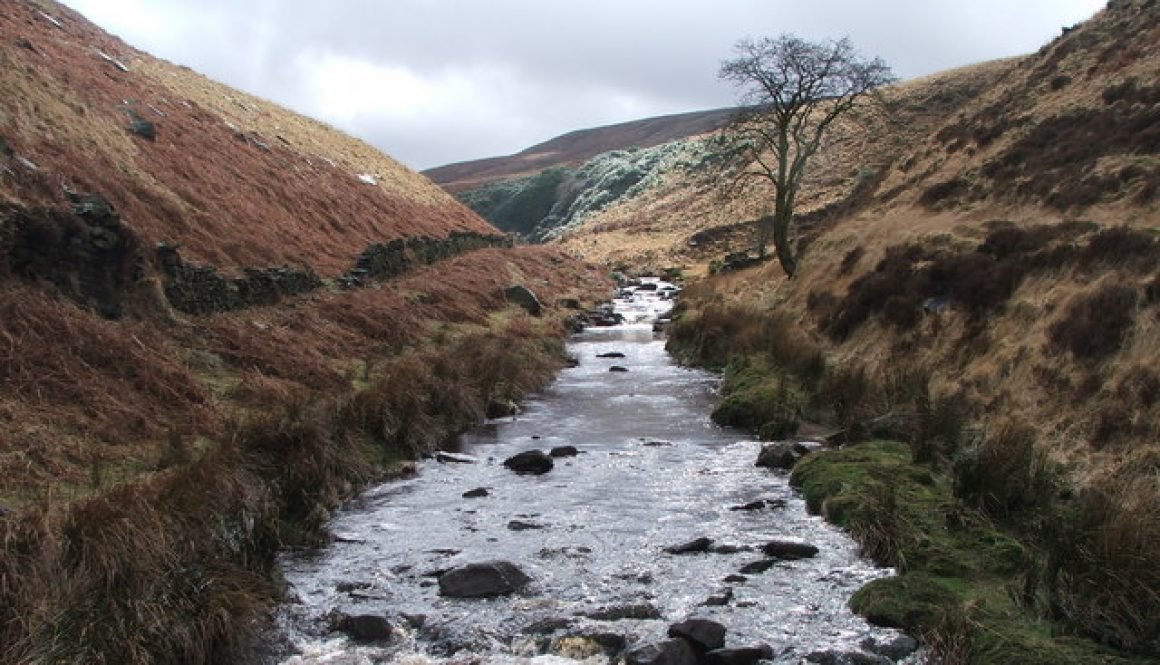 01_River_in_Wessenden_Valley._-_geograph.org.uk_-_145629