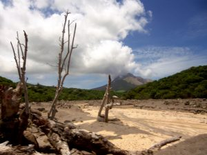 National Ecosystem Assessment of Montserrat